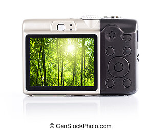 Photographing - Photo display on camera LCD screen. The ...