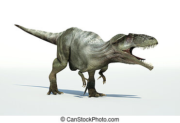 Photorealistic 3 D rendering of a Giganotosaurus. On white...