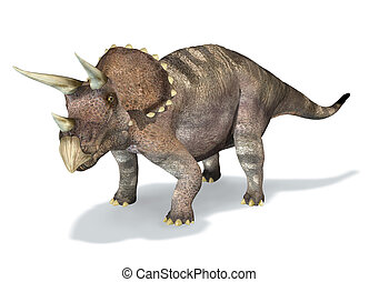 Photorealistic 3 D rendering of a Triceratops. On white...