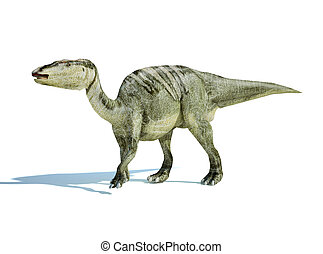 Photorealistic 3 D rendering of an Edmontosaurus. On white...