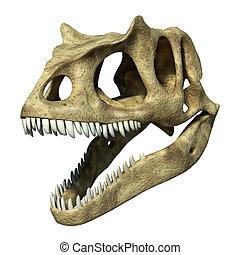 Photorealistic 3 D rendering of an Allosaurus skull. On...