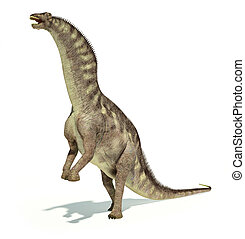 Photorealistic and scientifically correct representation of an Amargasaurus dinosaur. Dynamic posture. On white background with drop shadow and clipping path included.
