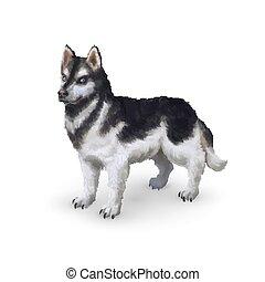 Photorealistic husky dog on white