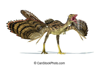 Photorealistic representation of an Archaeopteryx dinosaur.