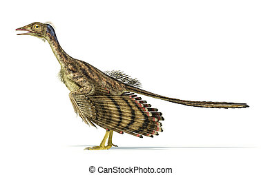 Photorealistic representation of an Archaeopteryx dinosaur....