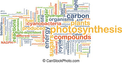 Photosynthesis background concept