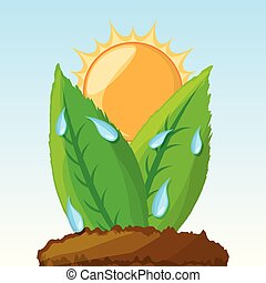photosynthesis process in the plants, vector illustration