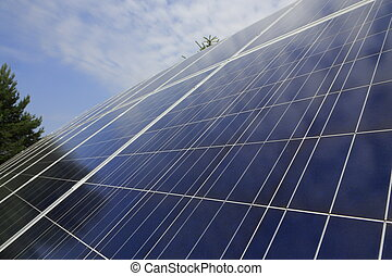Photovoltaic modules in front - Some photovoltaic modules...