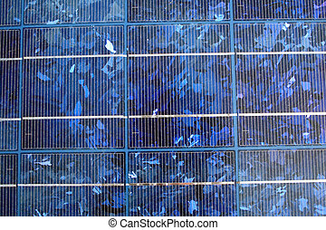 photovoltaic solar panel - blue-tinted polycrystalline...