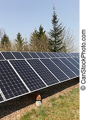 Photovoltaic solar panels in a field