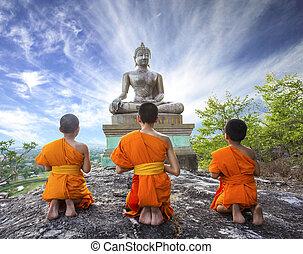 phrabuddhachay, 初心者, 修道士, saraburi, thailand., 仏, 寺院, 祈ること