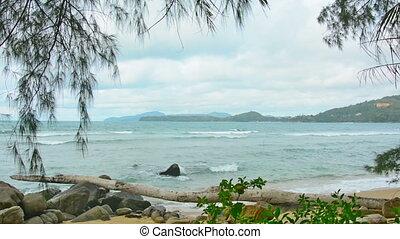 phuket, gens., sans, thailand., sauvage, plage
