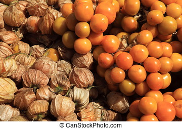 Physalis Berry
