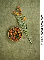 phytotherapy, calendula.dried., herbs., 薬, 草, 薬効がある