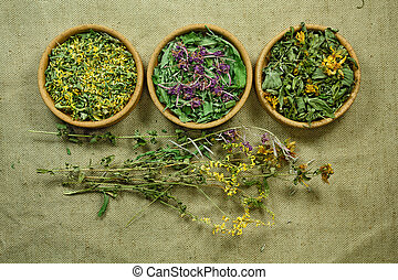 phytotherapy, dried., herbs., 薬, 草, 薬効がある