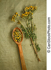 phytotherapy, dried., herbs., 薬, 草, 薬効がある, tansy.