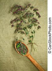 phytotherapy, dried., herbs., oregano., 草, 薬効がある, 薬