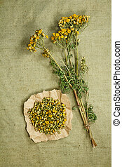 phytotherapy, herbs., 薬, 草, 薬効がある, tansy.dried.