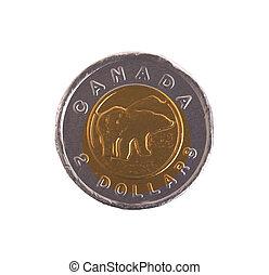 pièces, dollar, canadien, chocolat