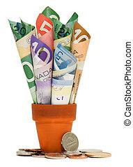 pièces, espèces, canadien