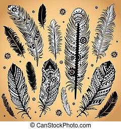 pióro, fason, ilustracja, etniczny
