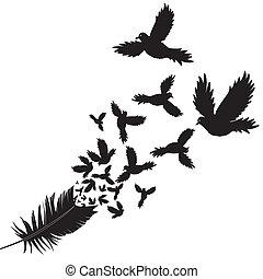 pióro, wektor, ptak, ilustracja