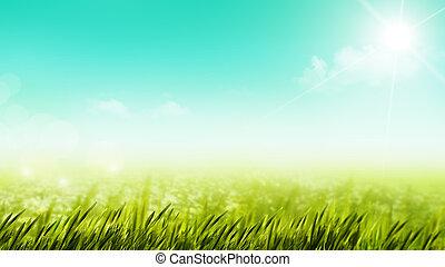piękno, letni dzień, na, przedimek określony przed rzeczownikami, łąka, kasownik, tła