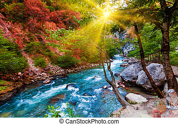 piękno, natura, krajobraz, krajobraz, tło., natura, composition., piękny, krajobraz