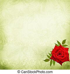 piękny, ślub, tło