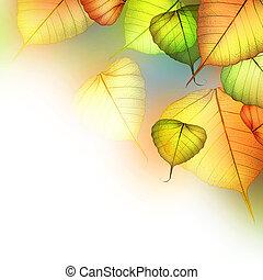 piękny, abstrakcyjny, leaves., jesień, upadek, brzeg