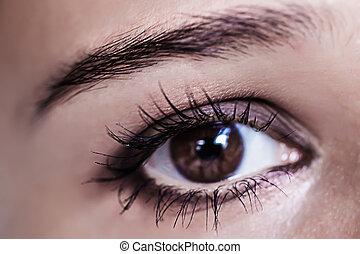 piękny, brunatne wejrzenie, oko, makro, makeup., make-up.