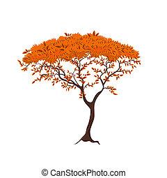 piękny, drzewo, dla, twój, projektować