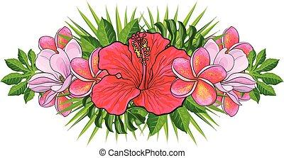 piękny, egzotyczne kwiecie, odizolowany, ręka, tropikalny, dłoń, pociągnięty, leaves., skład, kwiaty