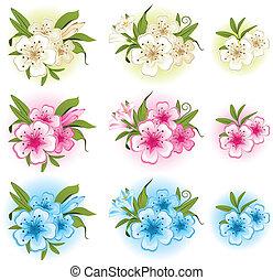 piękny, flowers., tło