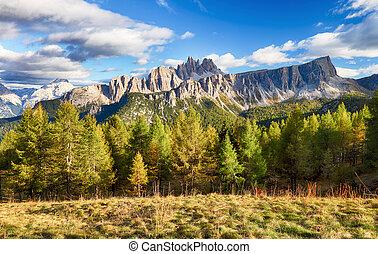 piękny, góra, alpy, krajobraz, las