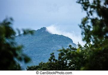 piękny, góra, antena, wizje lokalne, północ, crowders, krajobraz, carolina
