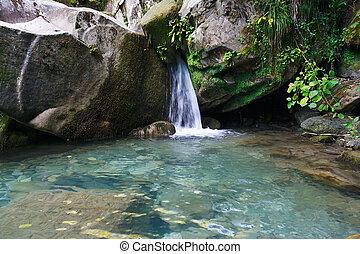 piękny, góra, trzęsie się, wodospad, las, mały