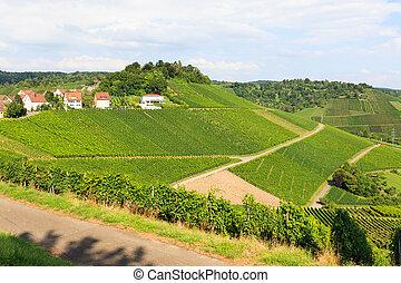 piękny,  geman, Wino, krajobraz, pola