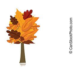 piękny, jesień, drzewo