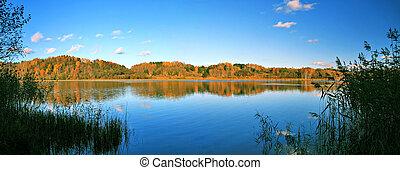 piękny, jezioro, jesień, panoramiczny, las, krajobraz