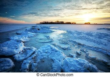 piękny, kasownik, zima, mrożony, motyw morski, morze, czas, podczas, sunset.
