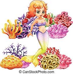 piękny, koral, syrena, rafa