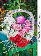 piękny, kwiaty, ogród, barwny