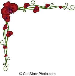 piękny, kwiaty, tło