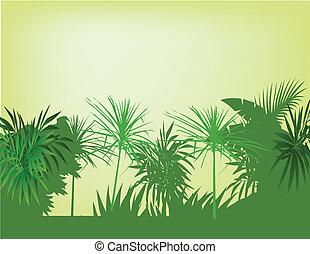 piękny, las, tło