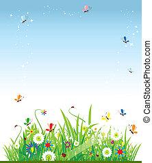 piękny, lato, łąka
