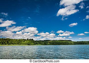 piękny, lato, jezioro, prospekt