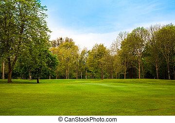 piękny, lato, krajobraz., zielone pole, i, drzewa