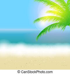 piękny, lato, plaża, słońce, drzewo, ilustracja, wektor, dłoń, tło, morze