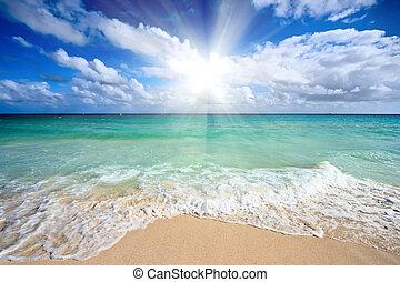 piękny, morze, plaża